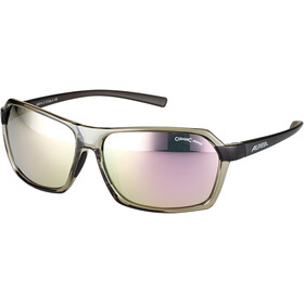 Alpina Finety Lunettes, transparent-grey